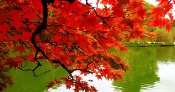 20 сентября - какие праздники сегодня, именины, события истории, дни рождения