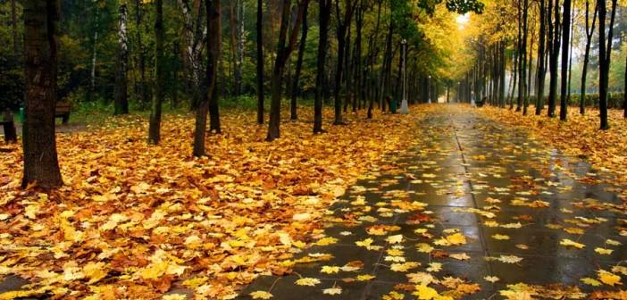 23 октября - какие праздники сегодня, именины, события истории, дни рождения