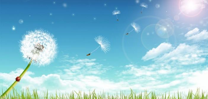 24 июня - какие праздники сегодня, именины, события истории, дни рождения