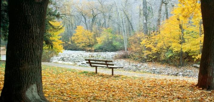 26 октября - какие праздники сегодня, именины, события истории, дни рождения