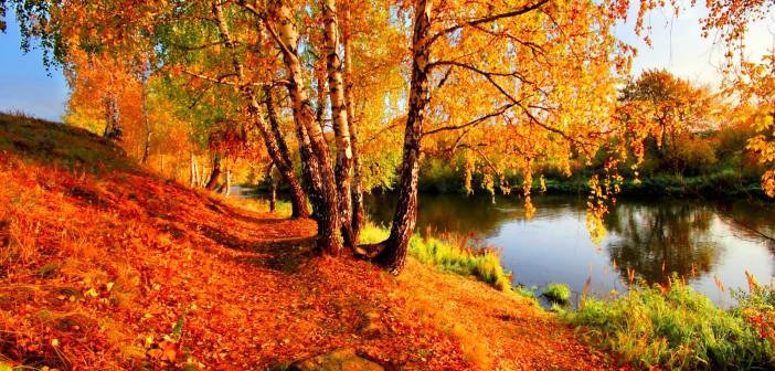 29 октября - какие праздники сегодня, именины, события истории, дни рождения
