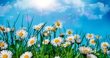 3 июня - какие праздники сегодня, именины, события истории, дни рождения