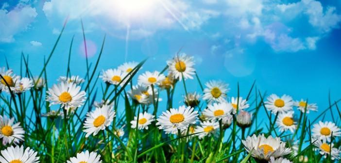 Праздник каждый день - Страница 12 3-iyunya-kakie-prazdniki-segodnya-imeninyi-sobyitiya-istorii-dni-rozhdeniya-702x336