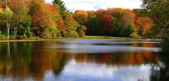 3 октября - какие праздники сегодня, именины, события истории, дни рождения