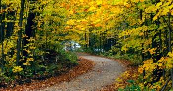 6 октября - какие праздники сегодня, именины, события истории, дни рождения