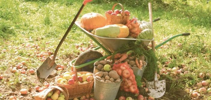 8 сентября - какие праздники сегодня, именины, события истории, дни рождения