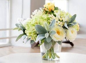 Декоративные цветы, фото