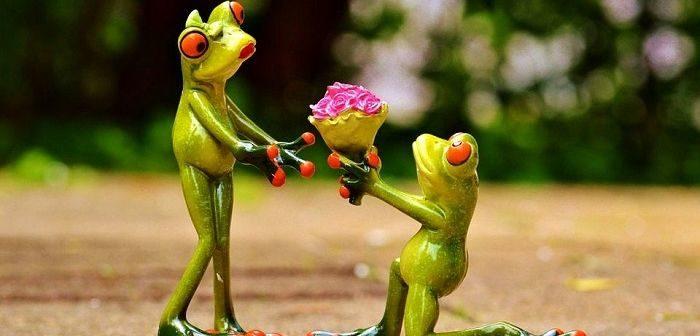 Дарить цветы женщине, фото