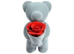 Мишка с розой, фото