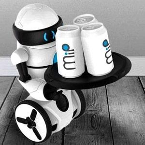 Робот MIP, фото