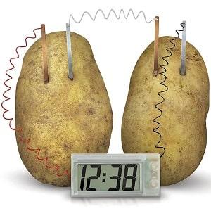 Часы на овощной батарейке, фото
