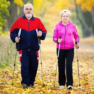Палки для скандинавской ходьбы, фото